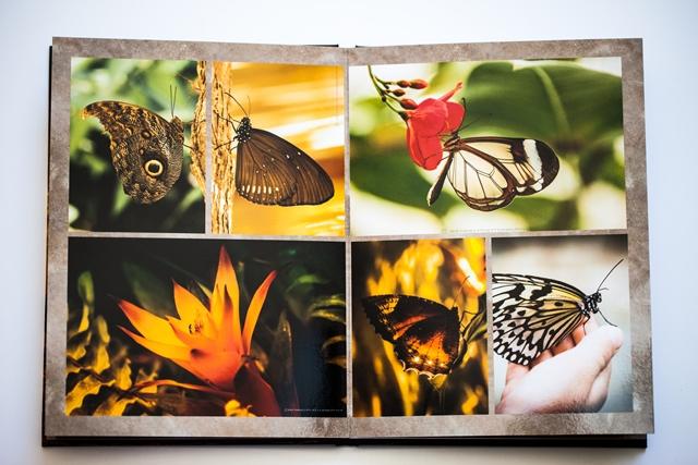 Echt-Fotobuch