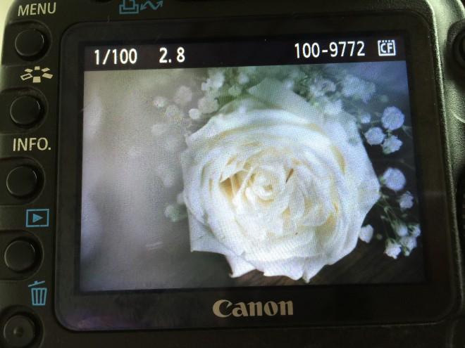 Foto 05.09.15, 13 38 33